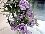 Японские ученые вырастили голубую розу
