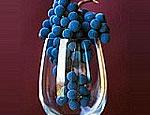 Выставка «Вино и виноделие» открылась в Одессе