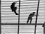 Главу тюменского СИЗО будут судить за использование труда заключенных