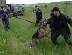В Мурманской области арестован поставщик южных мигрантов в Норвегию