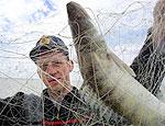 В Рыбнице возбудили уголовные дела по фактам лова рыбы в период нереста