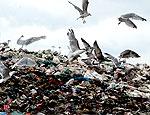 В Кировоградской области за 100 млн. долларов построят мусороперерабатывающий завод