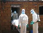 В Приморье зафиксирована вспышка геморрагической лихорадки