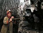ФАС начала проверку цен на уголь