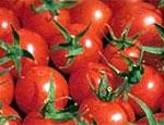 Россия ограничивает импорт турецких овощей и фруктов