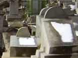 На нижегородском еврейском кладбище осквернены могилы
