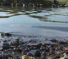 У берегов Сахалина ликвидирован разлив нефти