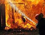 В Нижегородской области сгорел биозавод