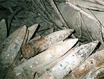 В Харьковской области обнаружили 50 артиллерийских снарядов времен ВОВ