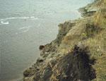 В уральском лесу повздорили рыбаки и ягодники: зачинщика столкнули с обрыва