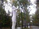 В главном парке Екатеринбурга уничтожили свыше 140 деревьев
