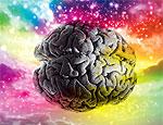Американские ученые создали пульт дистанционного управления мозгом