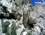 350 килограммов взрывчатого вещества найдено под Екатеринбургом