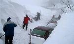 Францию занесло снегом