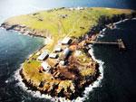 Одесская область приостанавливает работы по освоению острова Змеиный
