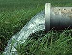 Крымское правительство поручило аграриям обеспечить полив на полях «еще вчера»