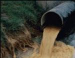 Урал: за загрязнение озера Таватуй невьянскую мэрию будут судить