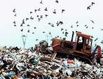 Шестая часть России признана зоной экологического бедствия