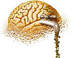 В Перми обсудят, почему «мозги утекают» в Москву
