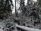 Украина продолжает бороться с последствиями стихийного бедствия