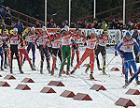 Прикамские спортсмены привезли медали с соревнований