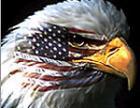 США выделяют на войну $97 млрд