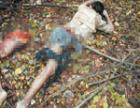 Пропавший подросток обнаружен мертвым на крыше дома в Москве